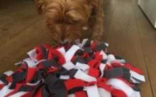 Нюхательный коврик для собак