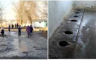 Видео со школьным уличным туалетом в Алматинской области возмутило Сеть