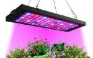 «Оптолюкс-Е27» — российская светодиодная лампа от зимней депрессии