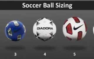 Размеры мячей в футболе: вес, диаметр и давление