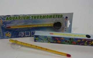 Термометр для аквариума, выбор, покупка