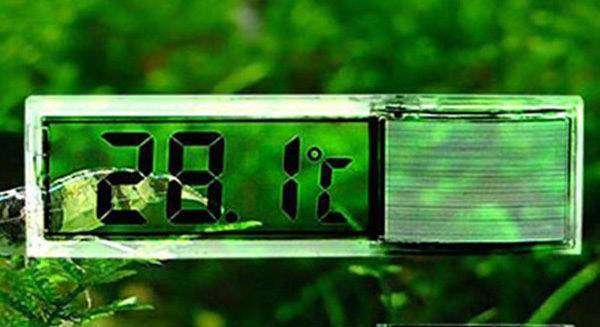 termometr-dlja-akvariuma.jpg