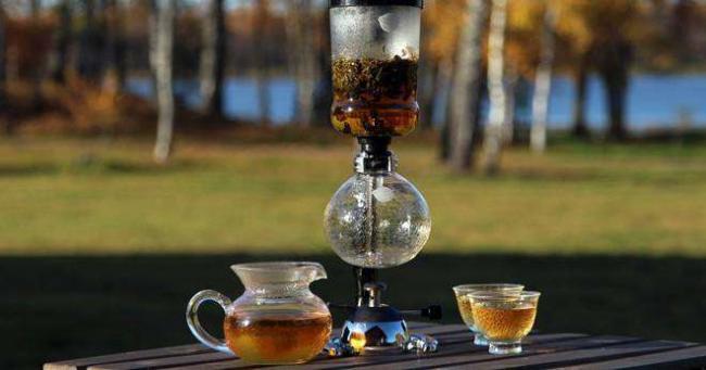 Сифон для чая – что это такое, особенности устройства, принцип работы, существующие преимущества