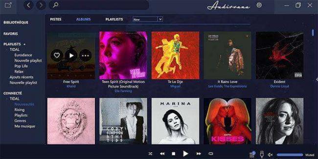 best-hi-res-music-player-apps-windows-audirvana.jpg