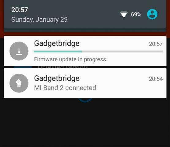 02-gadgetbridge-installing-firmware-update__555x480.jpg