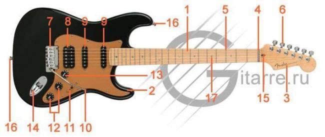 Fender_sm.jpg