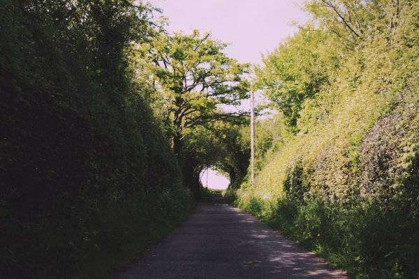 depositphotos_123792122-stock-photo-country-path-with-hedges-on.jpg