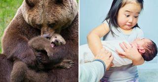 20 эмоциональных фото, которые поднимут настроение на ура