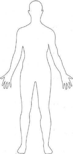 humanfigure.jpg