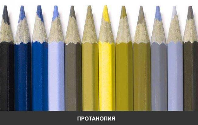 pronatopia.jpg