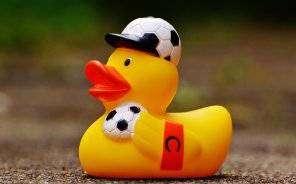 1540916289_rubber-duck-1390642_960_720.jpg