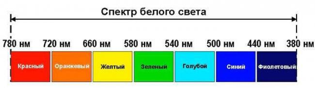 41.jpg