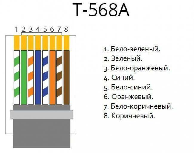 RJ45a.jpg