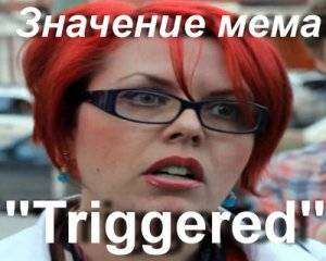 1482746306_triggered-mem4.jpg